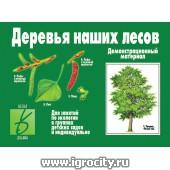 """Демоматериал """"Деревья наших лесов"""", арт. Д-284, Весна-Дизайн"""
