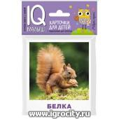 """Карточки для детей """"IQ малыш. Кто живет в лесу"""" Айрис-Пресс, арт.25736"""