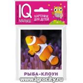 """Карточки для детей """"IQ малыш. Обитатели морей и океанов"""" Айрис-Пресс, арт. 25957"""