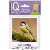 """Карточки для детей """"IQ малыш. Птицы"""" Айрис-Пресс, арт.25983"""