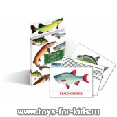 """Дидактические карточки """"Речные рыбы"""", Маленький гений"""