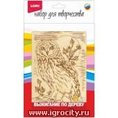 """Выжигание в рамке """"Полярная сова"""" (формат рамки 13х18 см.), арт. Вр-055"""